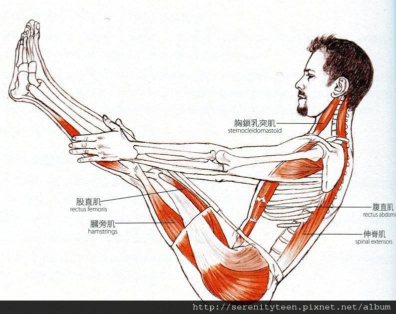 yoga (2).jpg