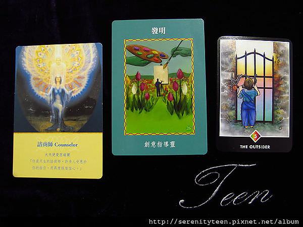 2013TriCard (5)