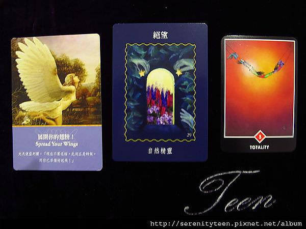 2013TriCard (11)